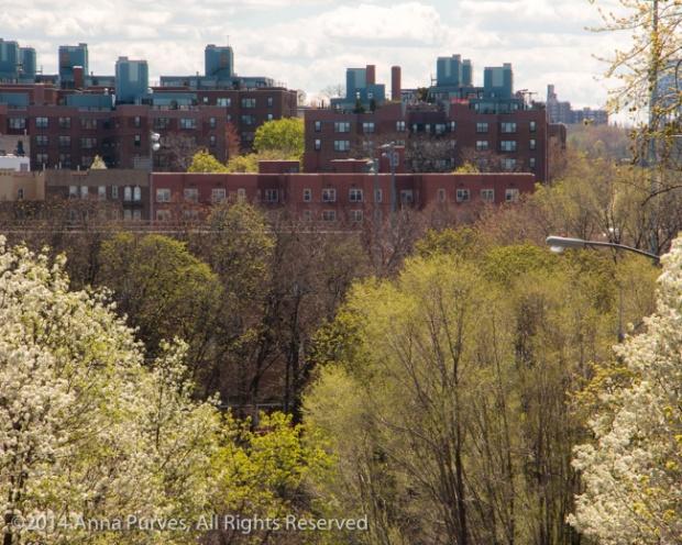 Spring Advances on the City