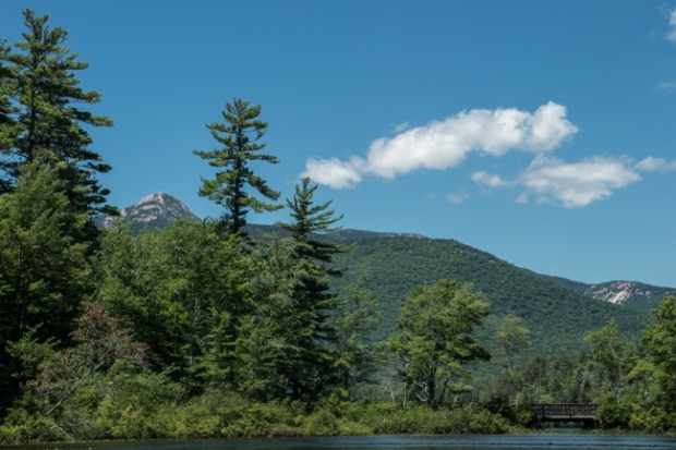 Mt Chocorua_through the pines